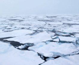 Banquise Actique et Antarctique | Les Mondes Polaires