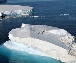 Iceberg Arctique et Antarctique | Les Mondes Polaires