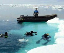 Plongee activite des regions polaires   Les Mondes Polaires