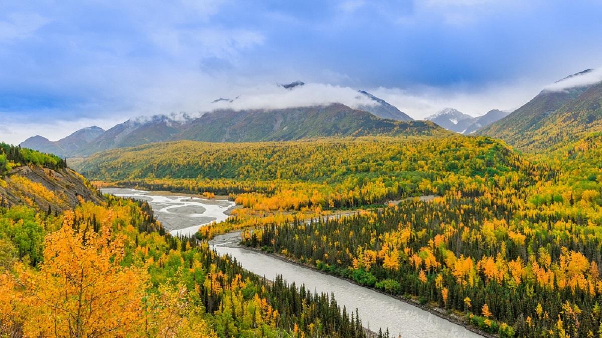 Foret et lac - Alaska | les Mondes Polaires